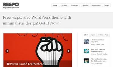 Respo WordPress Template