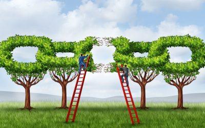 Linkbuilding: 5 manieren om aan meer links te komen!