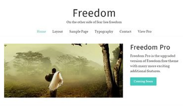 Freedom WordPress Template