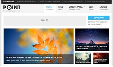 Point WordPress Template