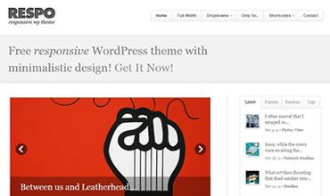 Respo WordPress Template