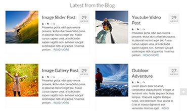 Virtue WordPress Template